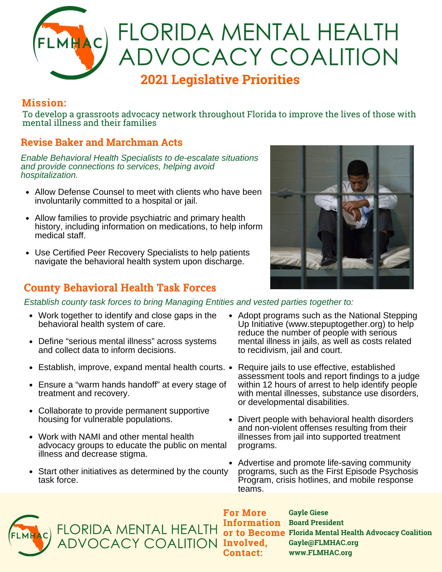 FLMHAC-flyer-2021-baker-marchman-County-task-forces-1-page-2